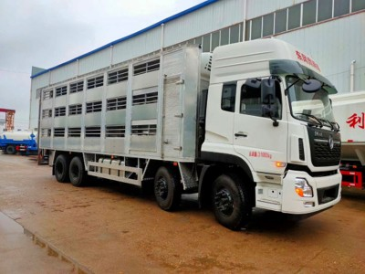 专业运猪车生产厂家